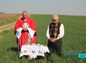 Blagoslov žita u Lemešu